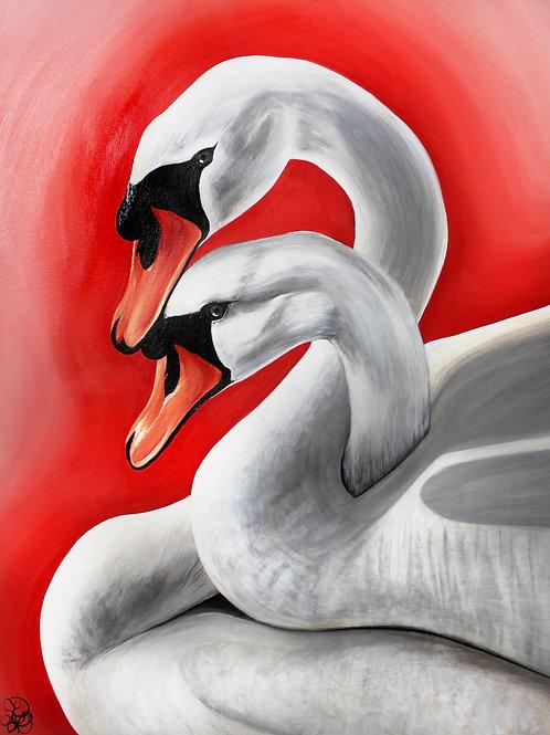 Swan - Print
