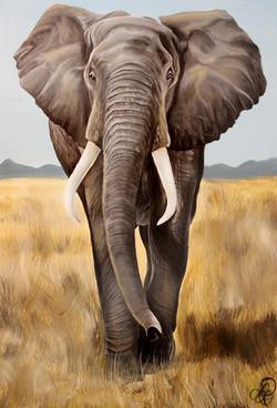 Elephant Painting #2