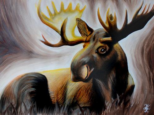 Moose - Print