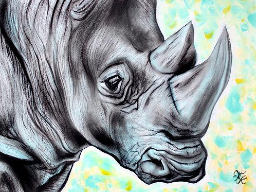Rhino - Print