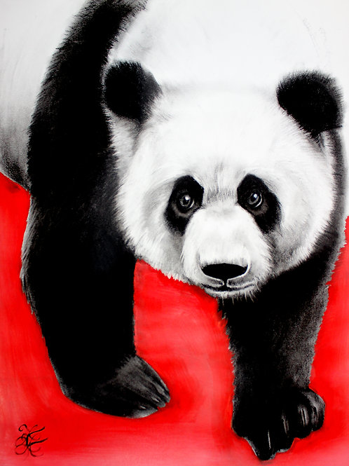 Panda - Print