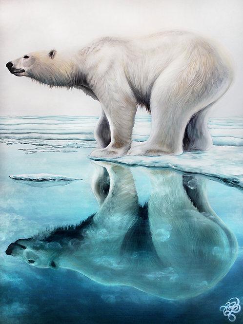 Polar Bear - Print