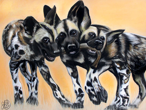 African Wild Dogs - Print