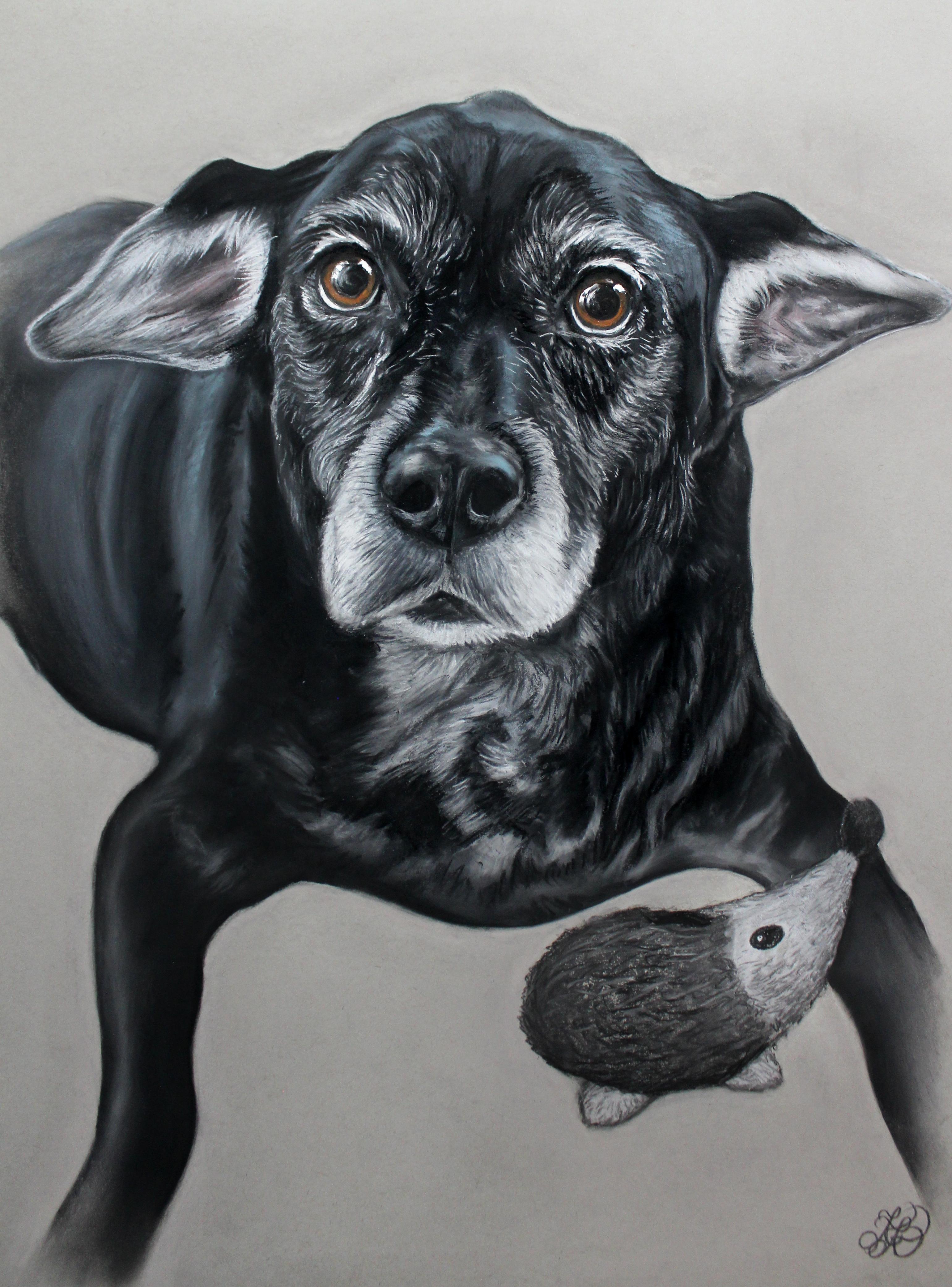 Chili Dog Commission