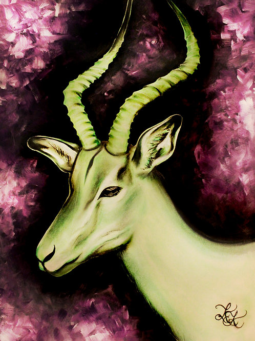 Antelope - Print