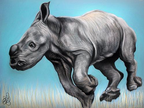 Rhino Baby - Print
