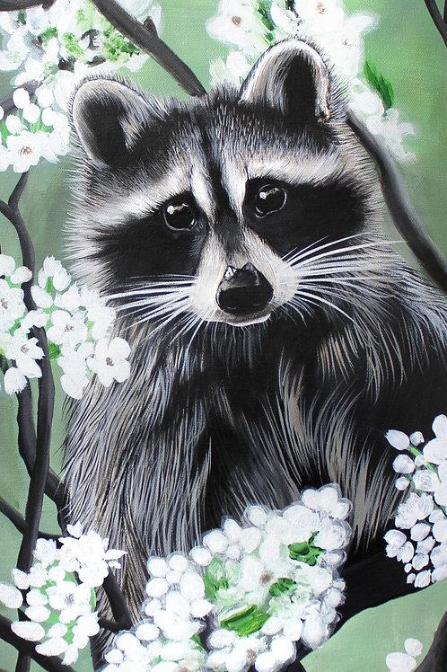 Raccoon - Print