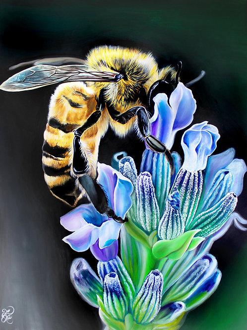 Bee - Print