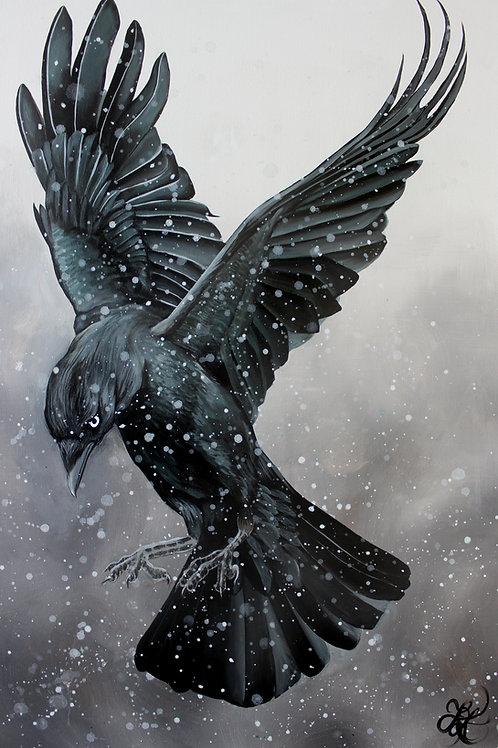 Crow - Print