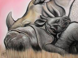 Rhino - Mother Baby (Drawing)