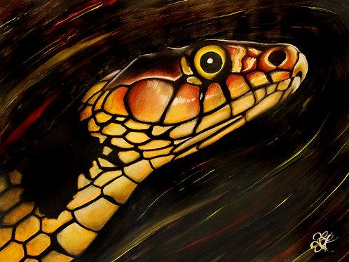 Snake - Print