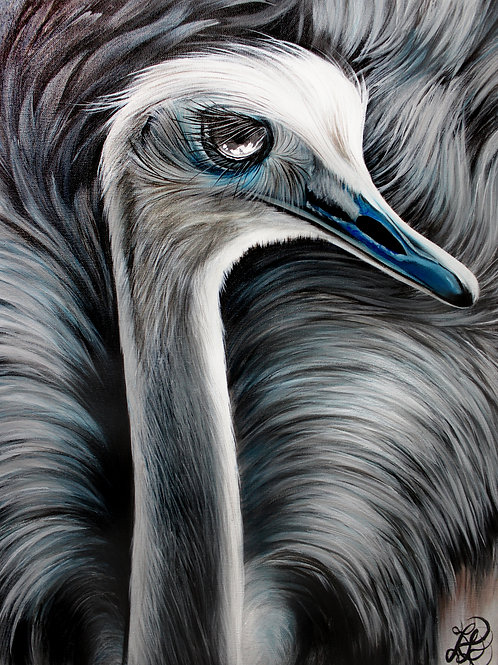 Ostrich Painting - Print