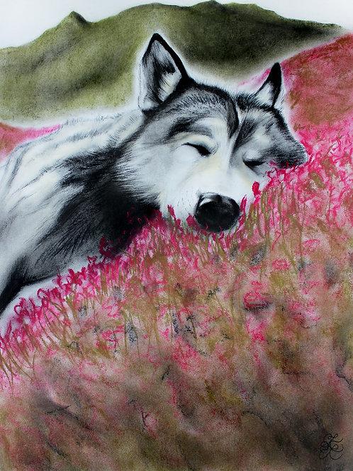 Wolf - Print (Spring Nap)