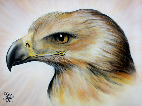 Golden Eagle - Print