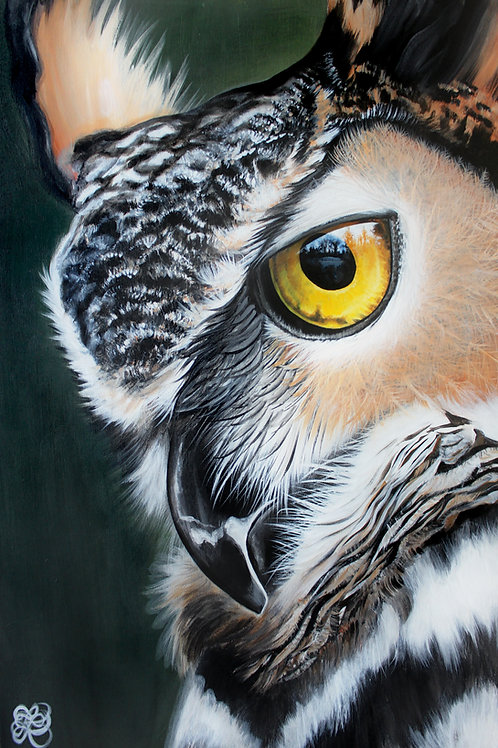 Great Horned Owl - Print