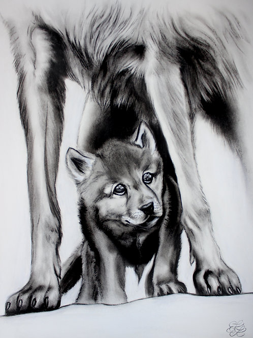 Wolf - Print (Big Paws To Fill)
