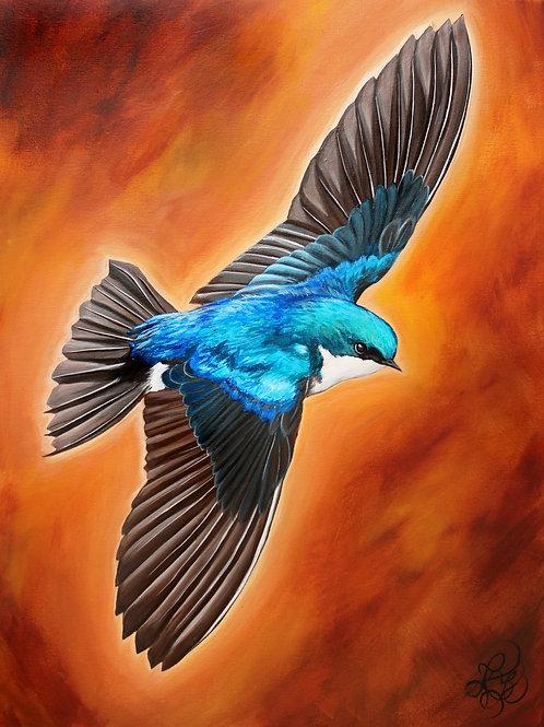 Swallow - Print