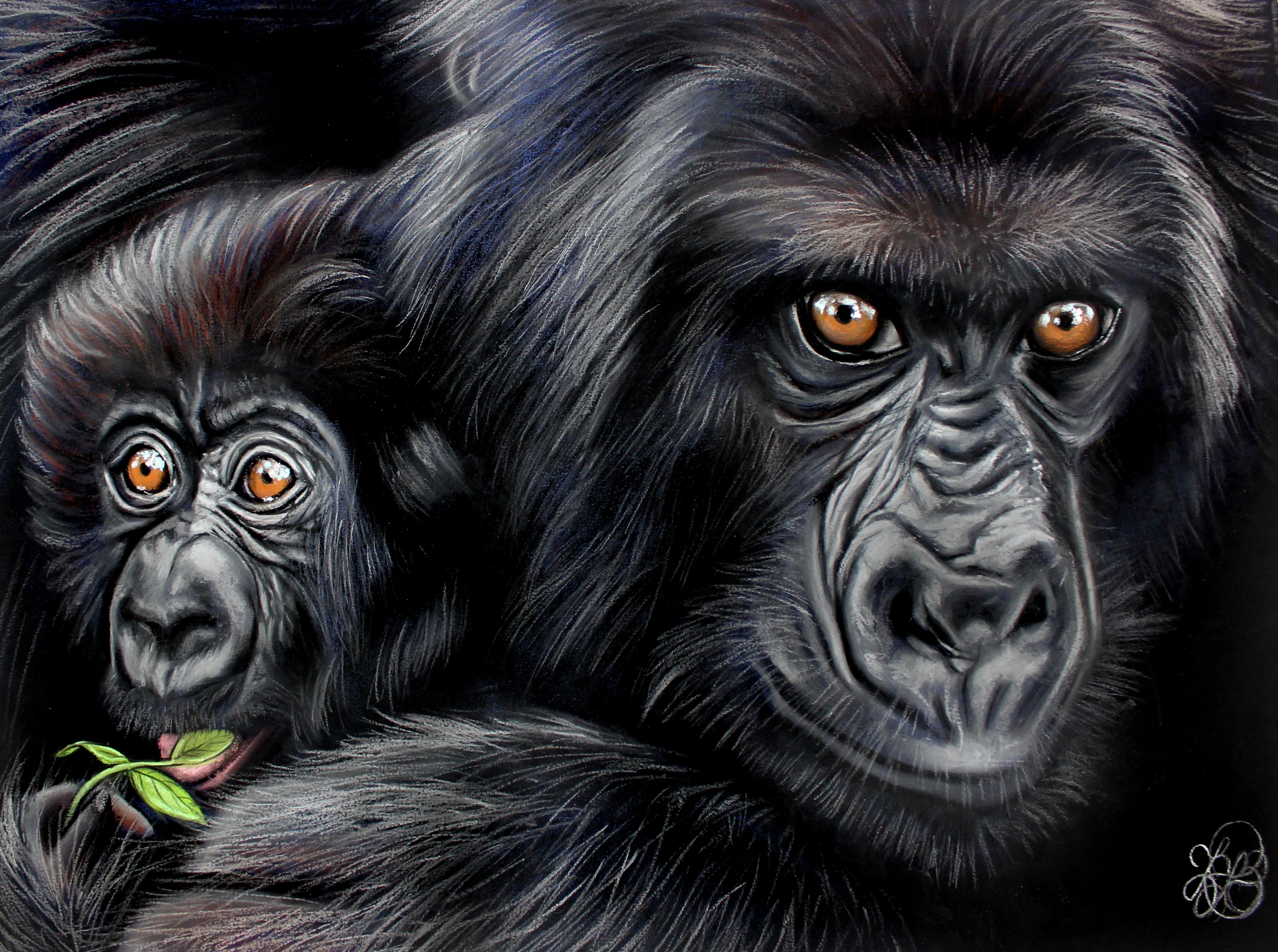 Gorilla Mom and Baby