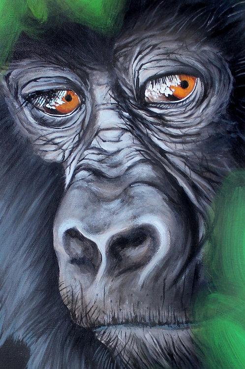 Gorilla - Print