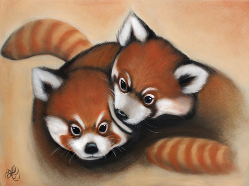 Red Pandas - Print
