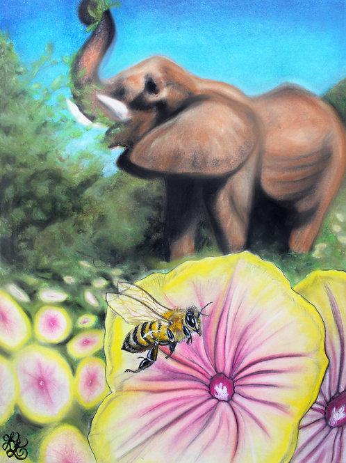 Bee & Elephant - Print
