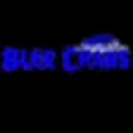 Nicholus Steward Logo Design  (1).png