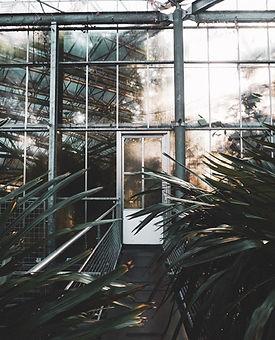 Amsterdam_hortus_botanicus_jardin_botanique_serres