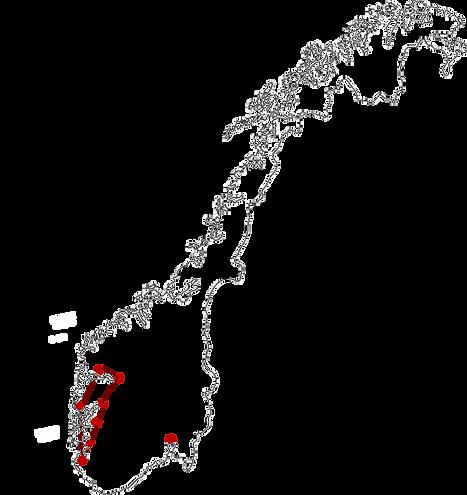 norvege des fjords site-1.png