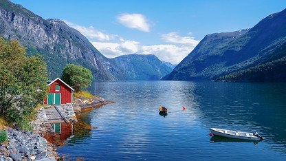 fjord_été_fleurs_soleil.jpg
