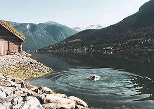 nordfjord.jpg