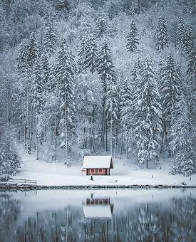 photo-of-house-near-trees-3375674.jpg