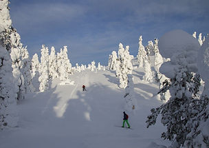 cross-country-skiing-2222934_1280.jpg