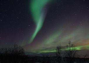 northern-lights-225454_1280.jpg