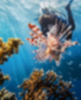 caraïbes_poisson_plongée_sous_marin