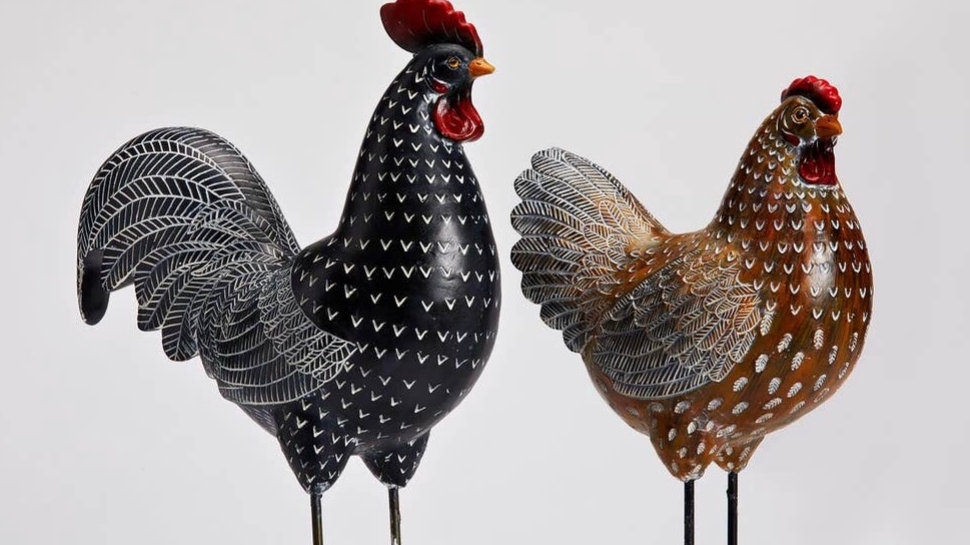 Rooster or Hen