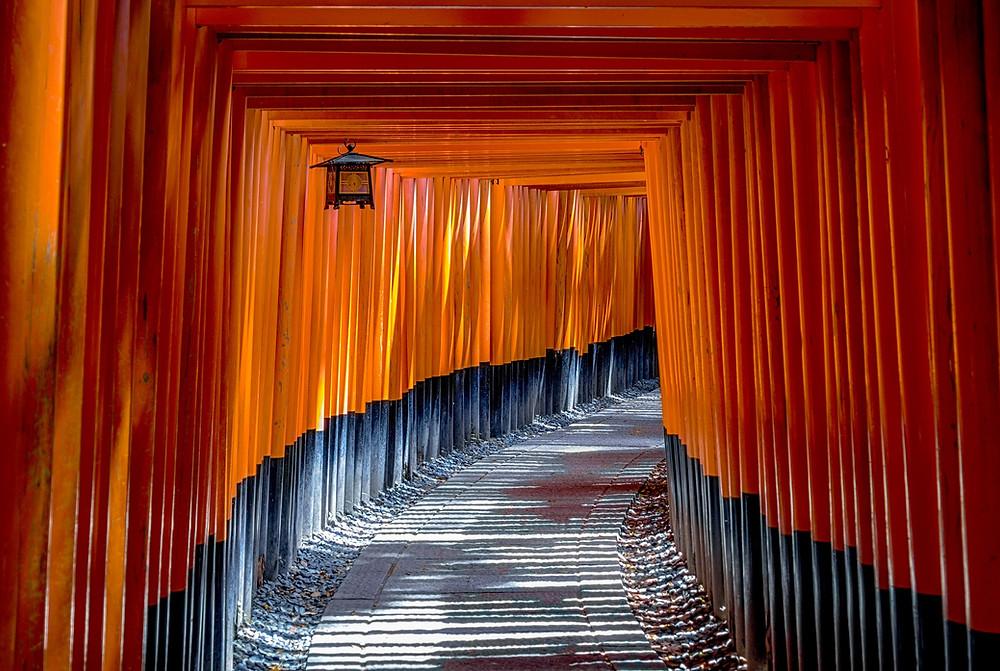 Toris vermelhos em Fushimi Inari