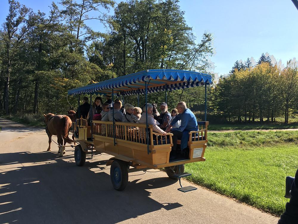 Passeio de carruagem no Herreninsel