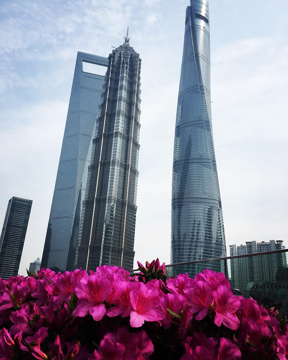 As Torres 3 irmãos de Shanghai