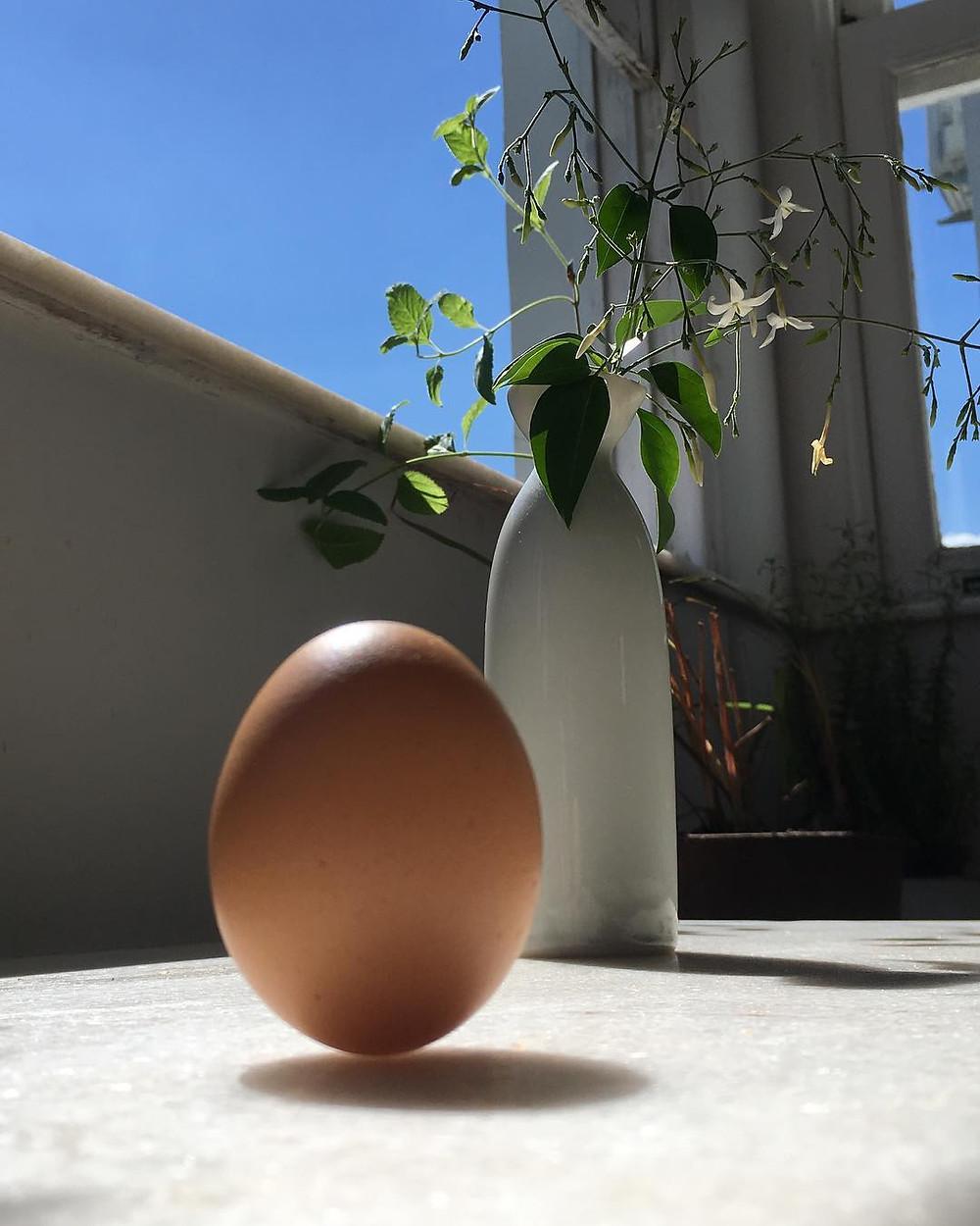 Equilibrando um ovo em pé