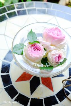薔薇ガーデン