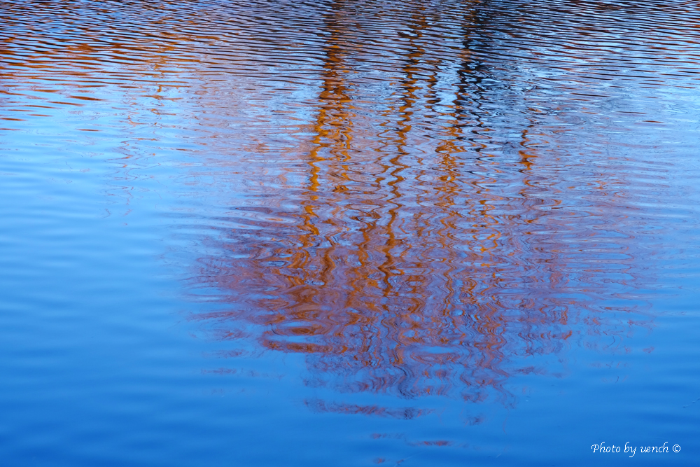 水面の風景