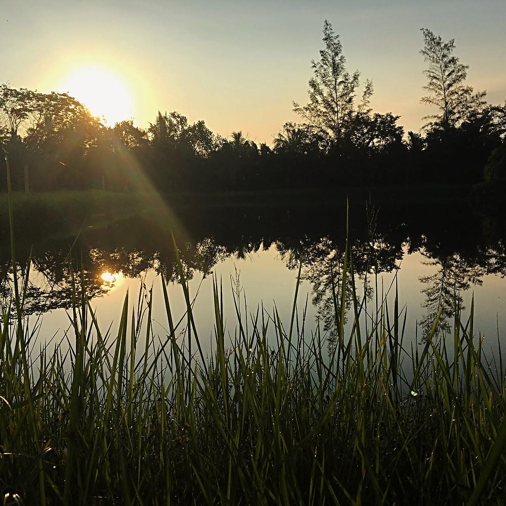 Lago onde praticávamos caminhada meditativa ao ar livre