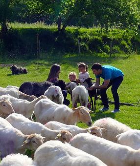 pastor por un día