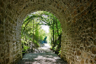 Arraiarteko tunela