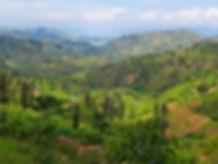 rwanda-landscape.1900.1.jpg