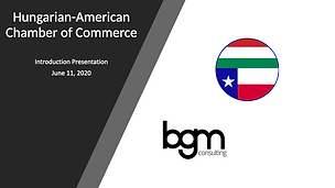 Introduction to BGM Consulting - Business & Tax Consulting
