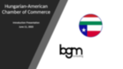 Texas start-up, Hungarian American Chamber of Commerce, Texas