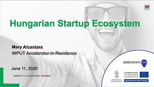 Hungarian Startup Ecosystem - INPUT Program