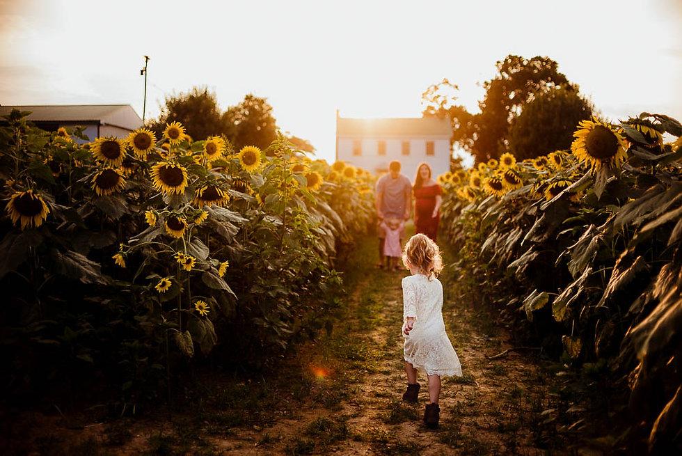 Tasha Sojka Photography