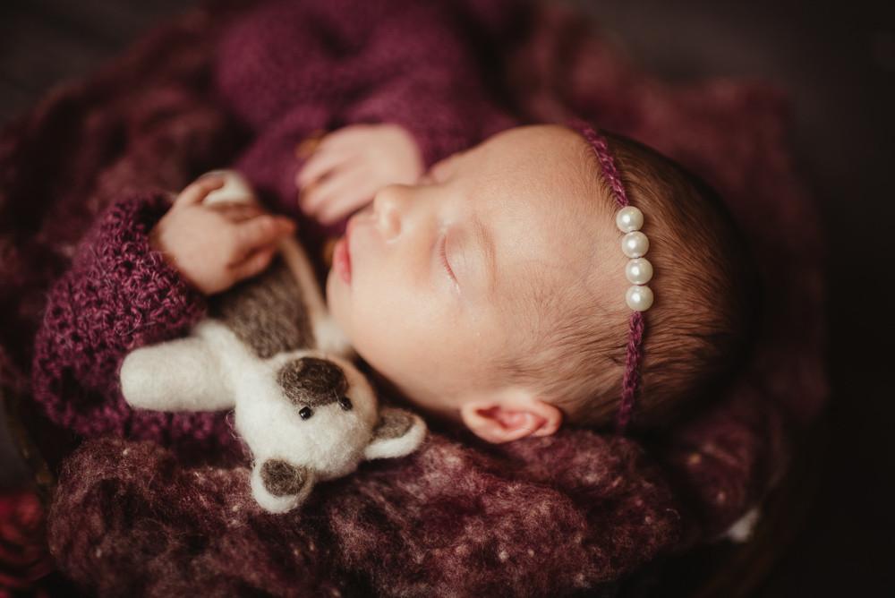 newborn girl purple bear